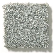 Carpet swatch | Flooring by Wilson's Carpet Plus