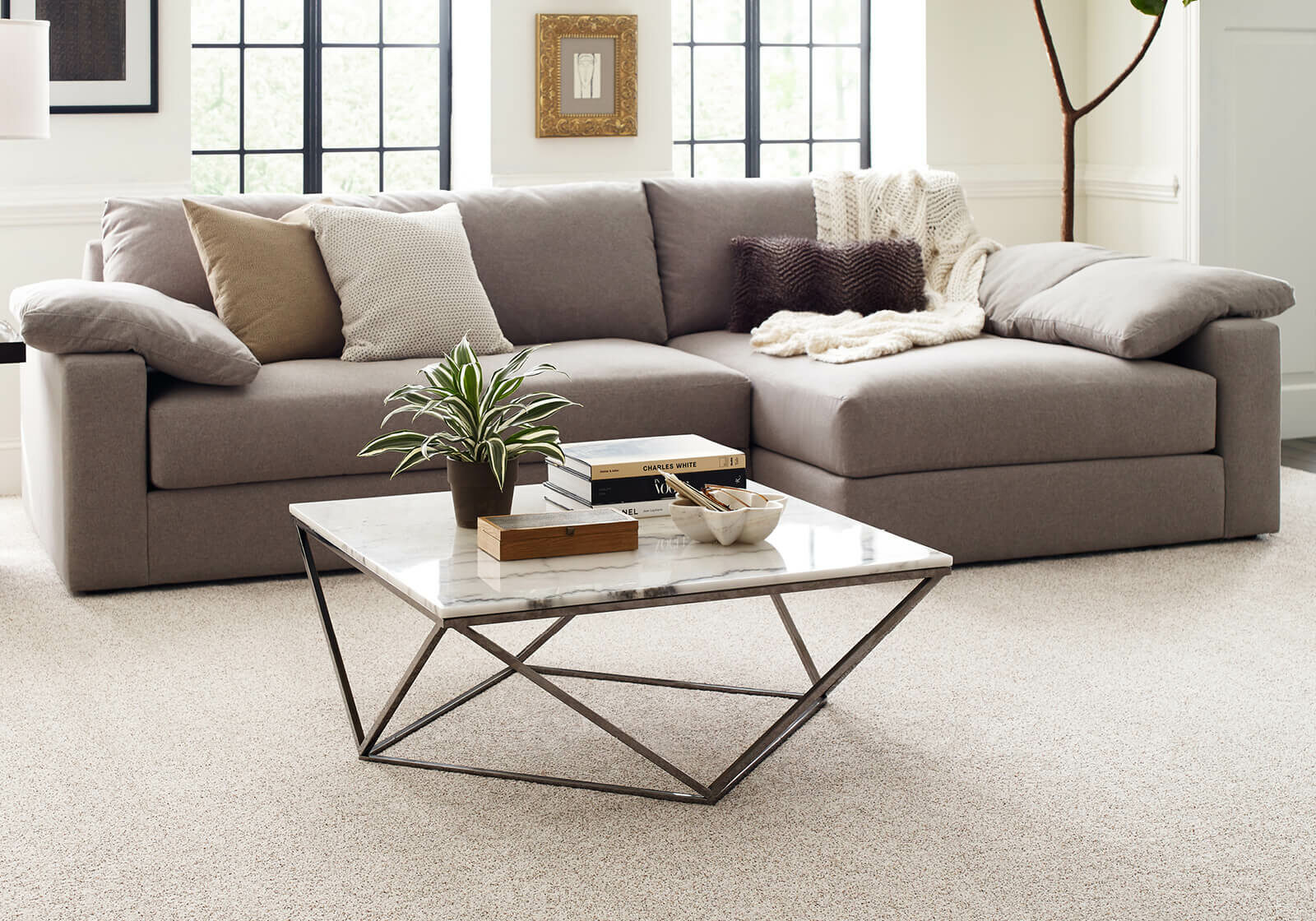 Comfortable carpet | Flooring by Wilson's Carpet Plus